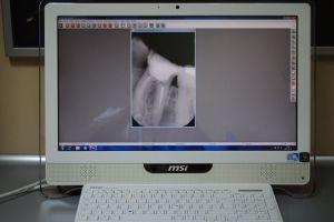 Dentysta_Łódź_24